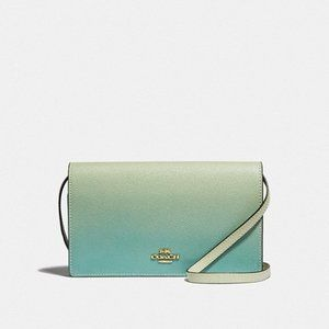 COACH Hayden Ombre Leather Crossbody Clutch F67504